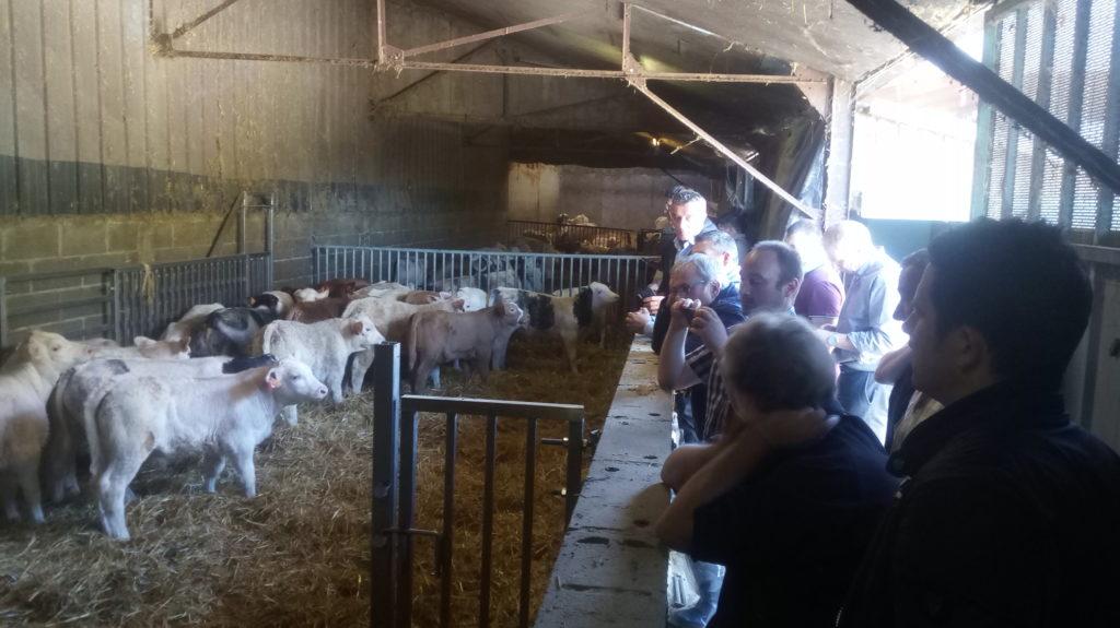 Visite d'élevage chez Magalie Pouriel